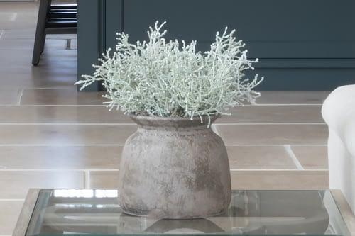 Silverbush in rustic vase